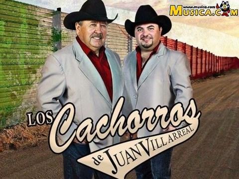 Los Cachorros de Juan Villarreal