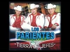 Los Parientes De Sinaloa