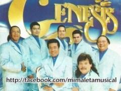 La Organización Genesis