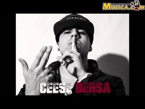 Ceese Bersa