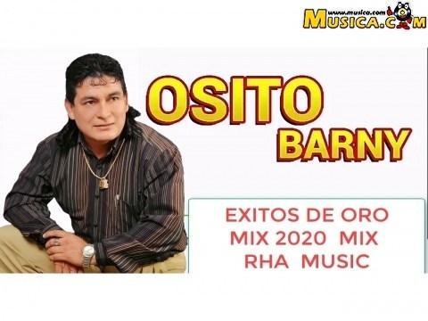 Osito Barny