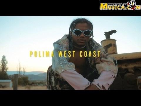 Polimá Westcoast