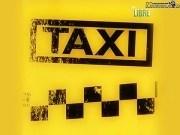 Canción 'Culpable' interpretada por Taxi