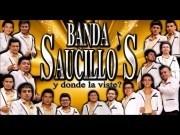 Banda Saucillos