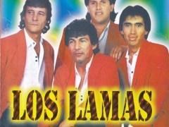 Amor herido de Los Lamas