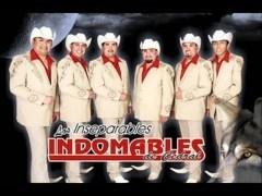 Los Indomables de Cedral
