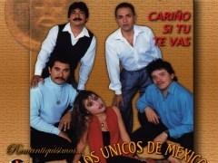 Los Únicos de Mexico