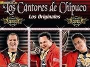 Los cantores de chipuco