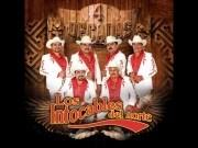 El Huizache - Intocables del Norte