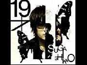 Suga Shikao