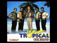 Tropical Del Bravo