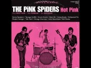 Pink Spiders