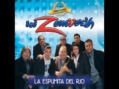 Río Traicionero - Los Zemver's