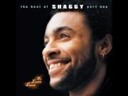 El Shaggy de 1