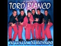La Banda del Toro Blanco