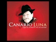 Canario Luna
