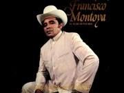 Camino Solitario de Francisco Montoya