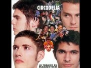 Circodelia