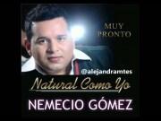 Nemecio Gomez