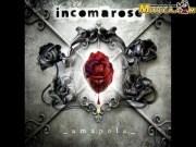 In Coma Rose