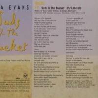 Canción 'Suds In The Bucket' interpretada por Sara Evans