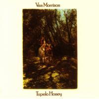 Wild Night de Van Morrison