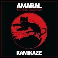 Letra Kamikaze Amaral