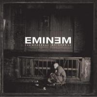 Paul de Eminem