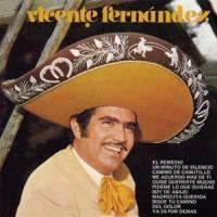Canción 'Un minuto de silencio' interpretada por Vicente Fernández