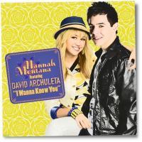 Canción 'I Wanna Know You' interpretada por Miley Cyrus