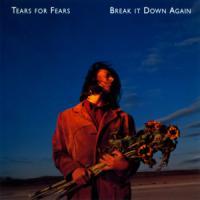 BREAK IT DOWN AGAIN letra TEARS FOR FEARS