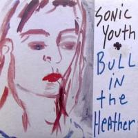 Canción 'Bull In The Heather' interpretada por Sonic Youth