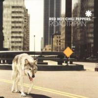 ROAD TRIPPIN' letra RED HOT CHILI PEPPERS