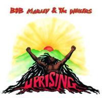 Canción 'Coming in from the cold' interpretada por Bob Marley