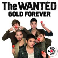 Gold Forever de The Wanted