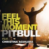 Canción 'Feel This Moment' interpretada por Pitbull