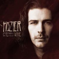 Canción 'Cherry Wine' interpretada por Hozier
