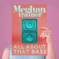 Canción 'All about that bass' interpretada por Meghan Trainor