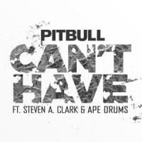 Can't Have - Pitbull