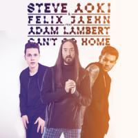 Canción 'Can't Go Home' interpretada por Adam Lambert