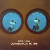 Coming Back To Life - Pink Floyd