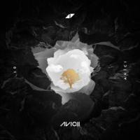 Canción 'Without You' interpretada por Avicii