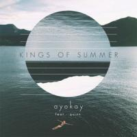 Canción 'Kings of Summer' interpretada por Quinn XCII