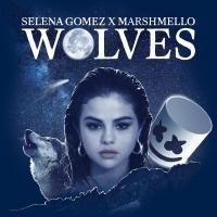 'Wolves' de Selena Gomez