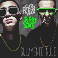 'Loro che ne sanno' de Capo Plaza