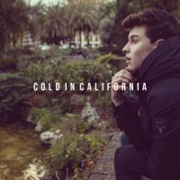 Cold in California - Shawn Mendes