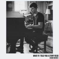 What If I Told You a Story - Shawn Mendes
