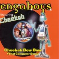 Cheekah Bow Bow - Vengaboys