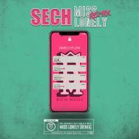 Miss Lonely Remix de Sech