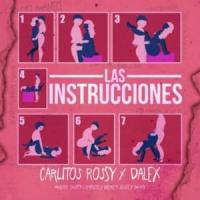 Canción 'Las Instrucciones' interpretada por Carlitos Rossy